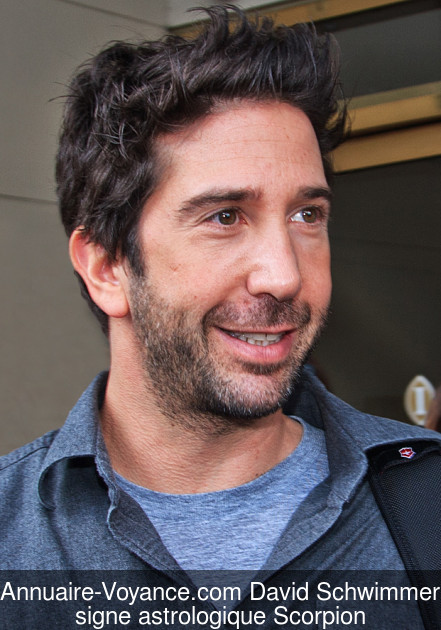 David Schwimmer Scorpion