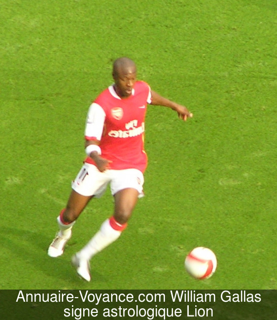 William Gallas Lion